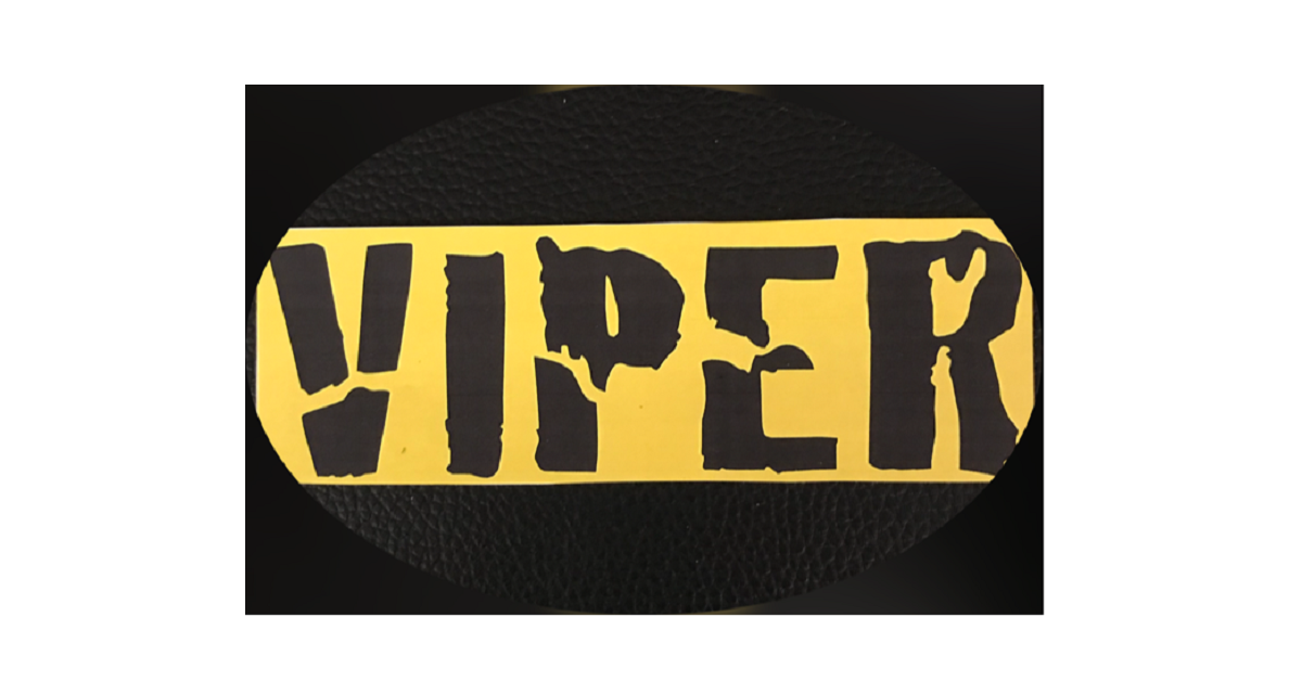 Only $15.95 to protect your valuable investment…Viper Security Technologies